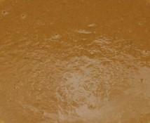 Soupe de poisson stockée en silo et transférés dans la vanne bidirectionnelle EGRETIER
